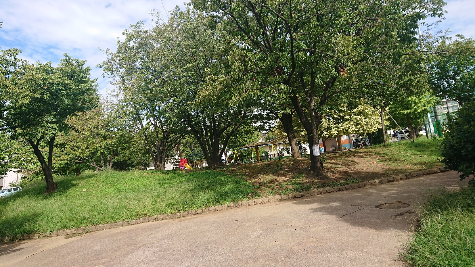 谷中公園の緑